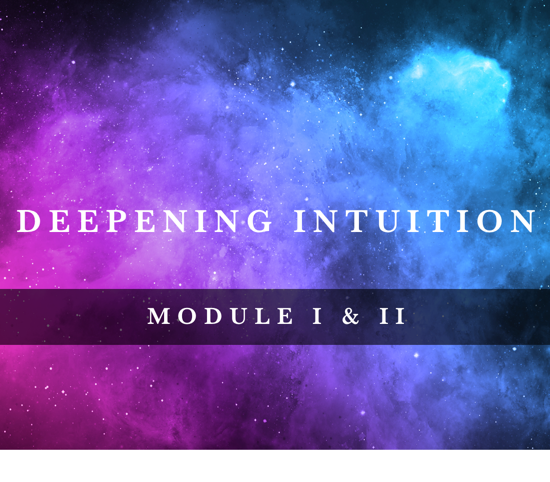 Deepening Intuition: Module Bundle